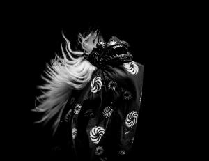 JAPAN DAY Leiden 2018 - Blikopfestivals - Alex Hamstra Photography - (27)